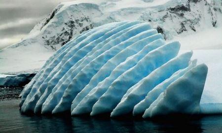 محققان در قطب جنوب آشپز استخدام میکنند