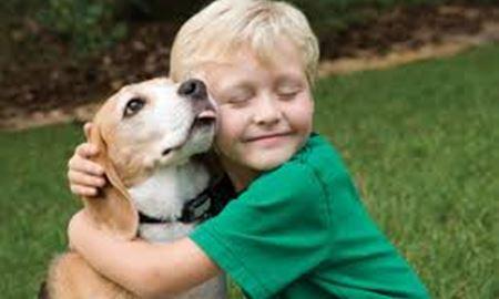 حیوان خانگی برای کودک، بخرم یا نخرم؟