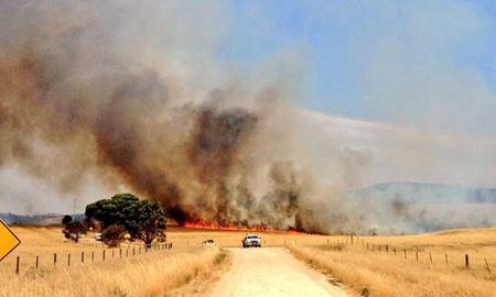 استرالیا بدلیل افزایش دما و گرمای شدید،گرفتار حریق شد