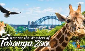 گردشگری استرالیا/سیدنی ...ایالت نیو ساوت ولز/ باغ وحش تارونگا ( Taronga Zoo )/گوینده...عاطفه صفری
