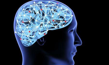 محققان استرالیا و انگلستان می گویند: هوش ،همیشه نشانه موفقیت افراد نیست