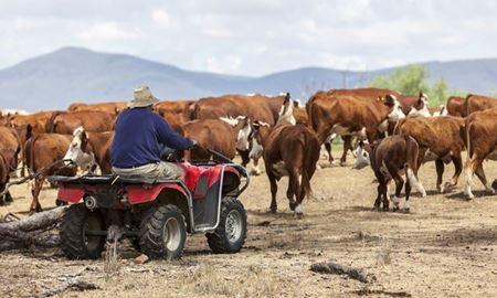 ابداع روش جدید برای پیش بینی خشکسالی ، پنج ماه زودتر از موعود، توسط محققان استرالیا