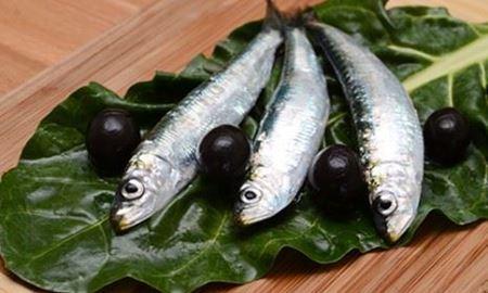 محققان استرالیا/خوردن ماهی ممکن است به جلوگیری از آسم کمک کند