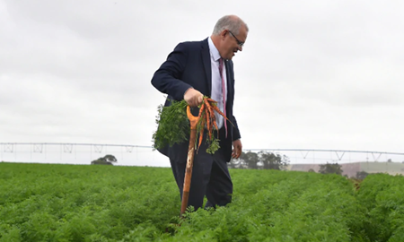 دولت استرالیا/چگونه تعداد مهاجران در مناطق روستایی و حاشیه ای را افزایش دهیم؟