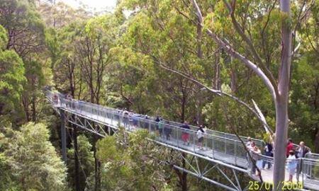 """گردشگری استرالیا/ملبورن ...گردشگاه """" Otway Range """""""