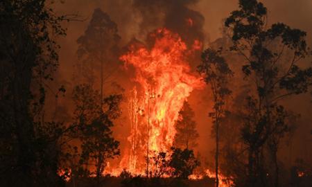 اعلام وضع فوقالعاده در استرالیا بدلیل آتش سوزی های گستره