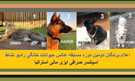 اعلام برندگان دومین دوره مسابقه عکس حیوانات خانگی رادیو نشاط